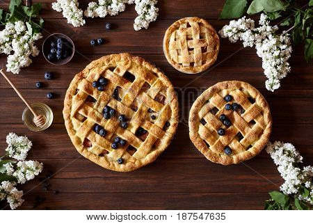 Homemade pastry apple pie pies bakery products on dark wooden kitchen table with raisins, blueberry, honey and apples. Traditional dessert on Independence Day. Flat lay food background. Top view