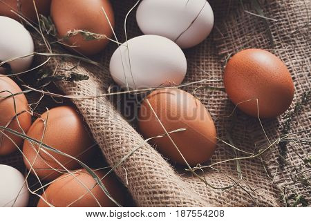 Fresh eggs. Poultry farm background. Rural still life, natural healthy food concept.