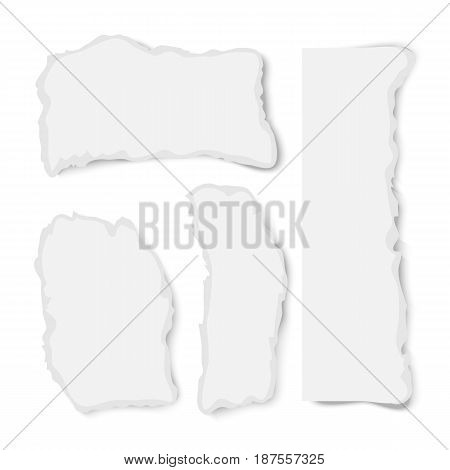 Realistic vector varoious ripped paper pieces with rough edges isolated on white background. Torn paper set. Vector torn paper