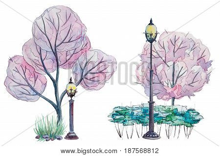 Hand drawn watercolor autumn background with park, outdoor elements: pink blooming trees, shrub and lantern on the white background