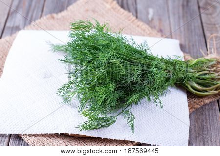 Bunch of dill isolated on a wooden background