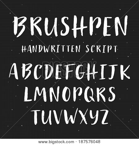 Handwritten brush painted font. English alphabet. ABC vector letters on a blackboard. Typographic art