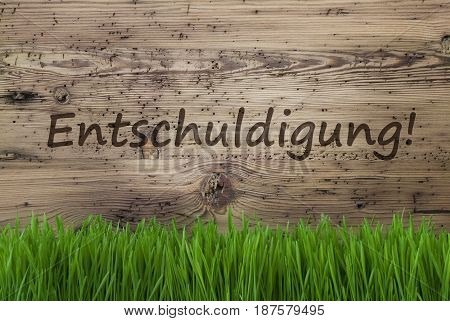 German Text Entschuldigung Means Sorry. Spring Season Greeting Card. Aged Wooden Background With Gras.