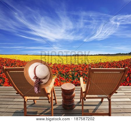 Concept of recreational tourism. Pair of convenient  chaise lounge next to flower field. Elegant women's straw hat hanging on a deck chair