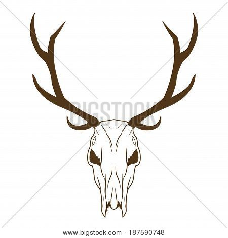 deer skull in tribal style. animal skull with ethnic ornament. wild and free design. vector illustration.