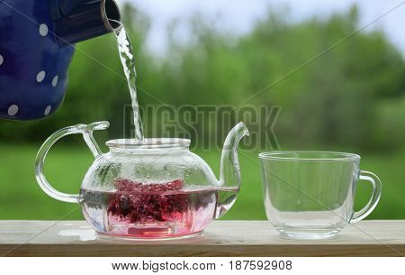 Filling the kettle with boiling water Carcade tea drinking on the veranda nature