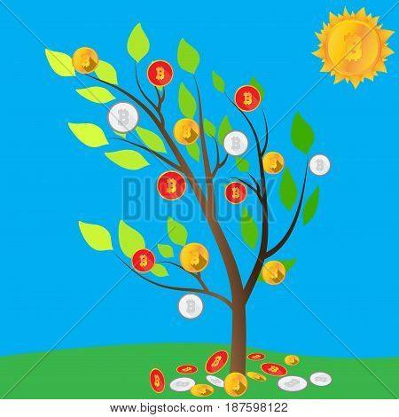 Bitcoin tree. Crypto the sun. Glade of mining. Business idea . The harvest of electronic money. Vector