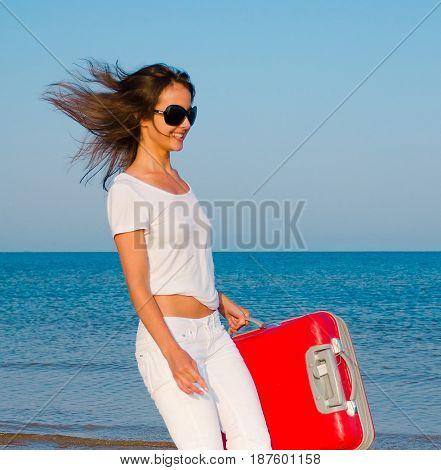 Suitcase Joy Tourist