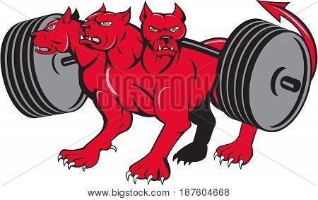 Illustration of cerberus in Greek and Roman mythology a multi-headed usually three-headed dog or hellhound with a serpent's tail a mane of snakes lion's claws powerlifting barbell done in cartoon style .