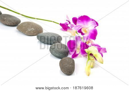 Photo of orchids and spa-stones on white background