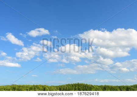 Close up of clouds and blue sky