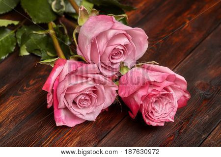 Three beautiful pink roses on wooden table romantic background closeup
