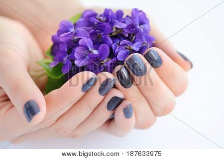 Hands Of A Woman With Dark Manicure On Nails And Flowers Violets On A White Background