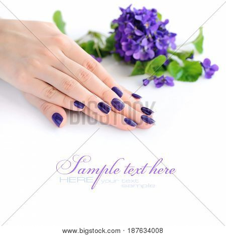 Hands Of A Woman With Violet Manicure On Nails And Flowers Violets On A White Background