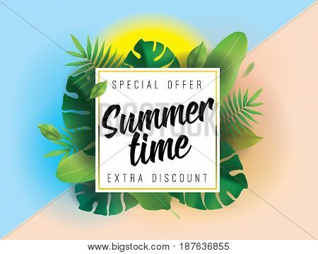Summer time, special offer, extra discount. Vector background with typography for posters and banners. Illustration with tropical leaves and sun.