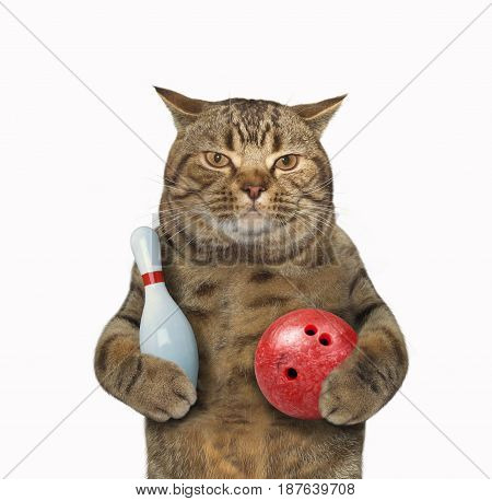 The cat is holding a bowling pin and a bowling ball. White background.