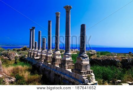 Remains of ancient columns at Al Mina excavation siteTyre Lebanon