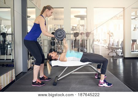 Young woman working out with barbell weights on a bench in the gym with the assistance of her personal trainer in a health and fitness concept