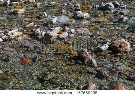 crystal clear water and colorful stones of natural wild river verzasca in switzerland