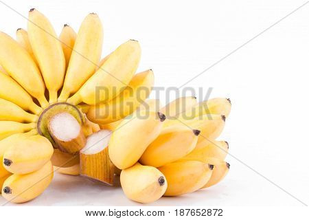 Lady Finger banana and  hand of golden bananas   on white background healthy Pisang Mas Banana fruit food isolated