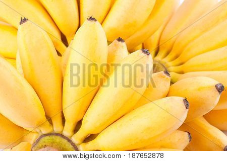 hand of Egg bananas  on white background healthy Pisang Mas Banana fruit food isolated