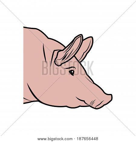 cute pig head cartoon animal farm image vector illustration