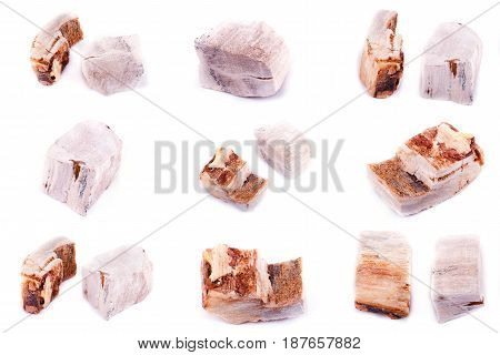 Collection of stone mineral Petrified wood close up