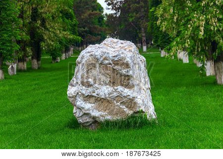 The fragment of the granite rock on a green grass lawn, and behind in two ranks is cost by trunks of trees.