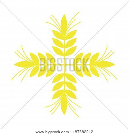 healthy wheat organ plant nutricious, vector illustration