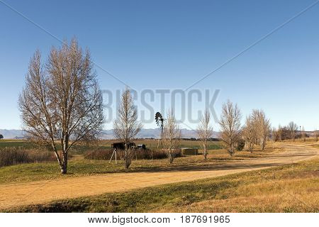 Rural Dirt Road Running Through Dry Winter Landscape