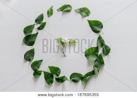 Round frame wreath pattern with leaves on white background flatlay