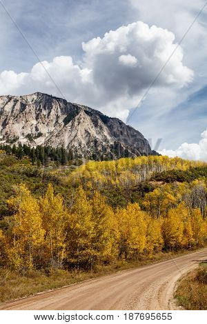 Autumn Scenery in the Rocky Mountains of Colorado. Kebler Pass, near Crested Butte