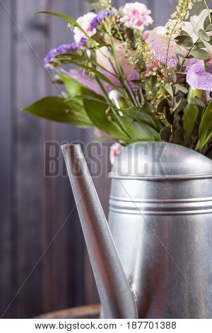 still life flowers in watering can on dark wooden background