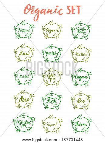 Organic set: hand drawn logo, label with green floral frame, with leaf. Vector illustration eps 10 for food, drink, restaurants, menu, markets, natural products, package. Brush lettering calligraphy