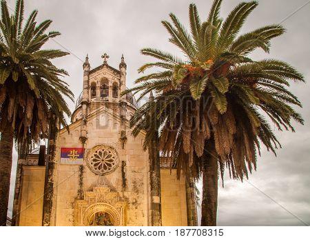 Palm trees around a church in herceg novi