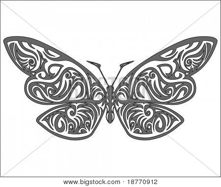 vector illustration of a butterfly