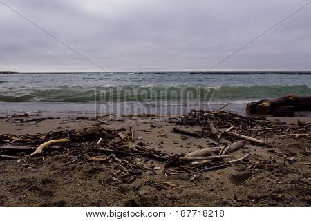 stormy ocean view with driftwood on beach