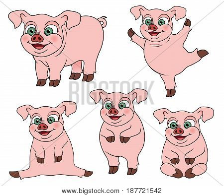 Set of cute cartoon pig on various positions, vector illustration.
