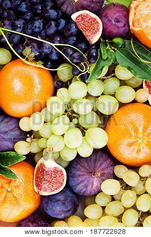 Organic Fruit Background. Green Grape Plum Tangerines Figs on Background. Healthy Food