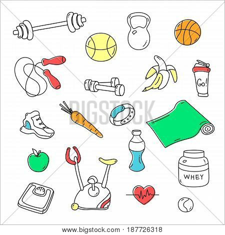 Hand drawn fitness doodles. Isolated set of gym equipment. Apple, sneaker, sport watch, dumbbells, scales, barbell, cycle, shaker, healthy food. Workout and training icons Sport lifestyle line art