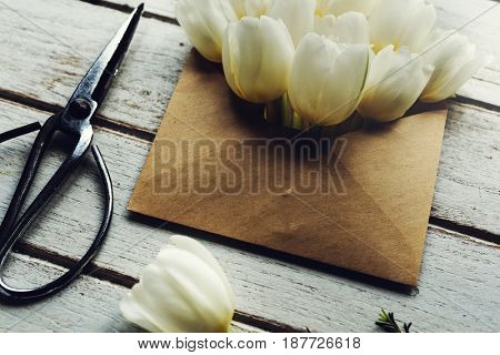 Blossom flower decorative tenderness fresh