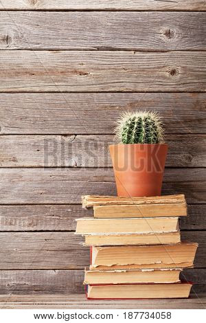 Cactus on old books in front of wooden wall. With copy space