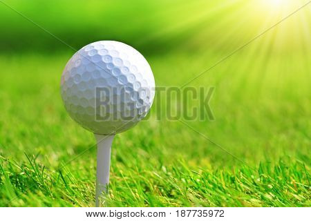 Close up of golf ball on tee.