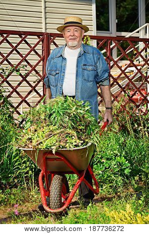 Happy senior man working in his garden. Gardening and vegetable farming. Happy retirement.