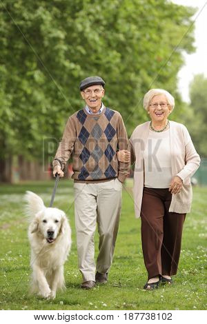 Full length portrait of a senior couple with a dog walking in the park