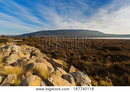 View of stone, vegetations growing at Pine Lake from side of Highland Lakes Road, Central Plateau in evening. Autumn in Tasmania, Australia