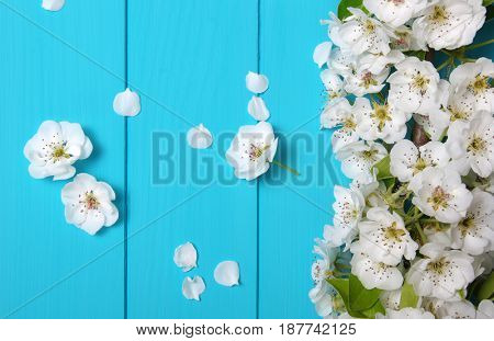 Spring flowers on wooden background.