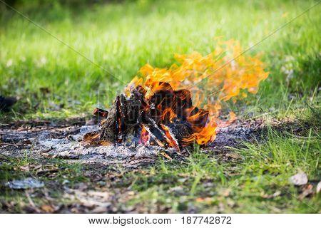 fire on fireplace on summer green meadow