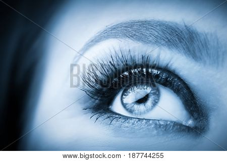 Widely open, attractive eye with glamour makeup close-up. Healthy eyesight and optician concept. Blue tone