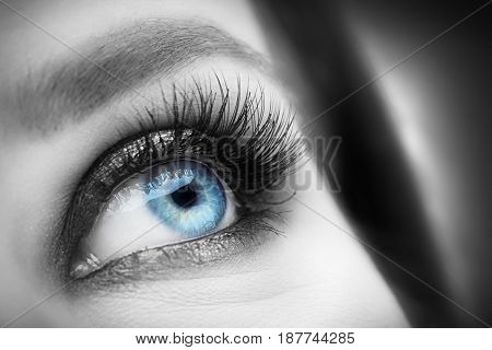 Widely open, attractive eye with glamour makeup close-up. Healthy eyesight and optician concept. Black and white shoot with blue iris.